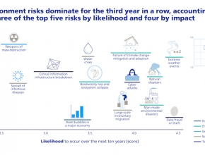 Global Risks Report des World Economic Forum